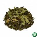Ginseng y Aloe Vera